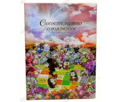 Обложка 'Свидетельство о рождении 192х263' Ёжики. Бумага, пластик.