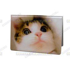 Обложка на паспорт 'Белый котёнок', пластик.