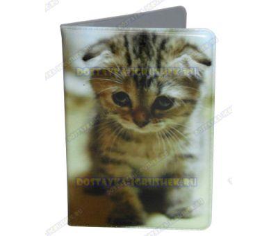 Корочка для проездного 'Домашний котёнок'. Пластик.