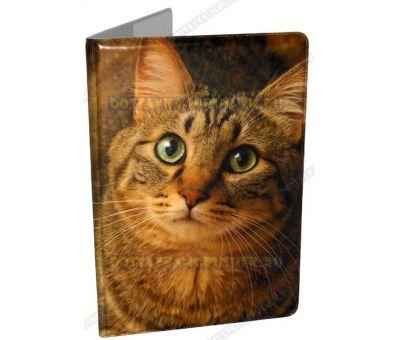 Обложка на паспорт 'Зеленоглазый кот', пластик.