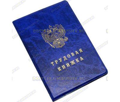 Обложка 'Трудовая книжка' синяя, пластик.